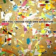 choose your own adventure - cover